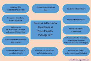 Effetti Pycnogenol 300x202 - Effetti Pycnogenol