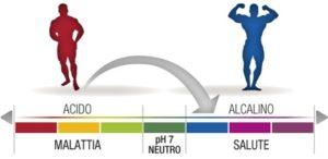 equilibrio acido base nellalimentazione  300x146 - equilibrio-acido-base-nellalimentazione-