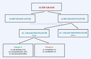 Acidi grassi 300x194 - Acidi-grassi